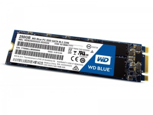 Western Digital WD Blue SSD 250 GB M.2 [WDS250G2B0B]